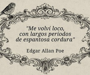 edgar allan poe, frases, and quotes image
