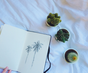 plants, book, and cactus image