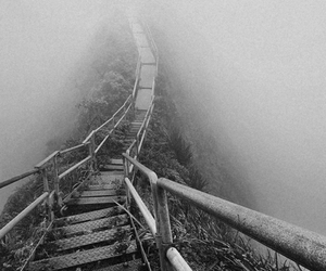 fog, OMG, and stairs image