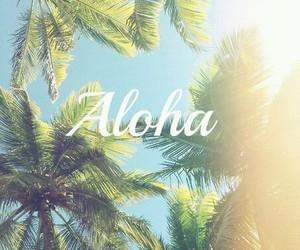 summer, Aloha, and sun image