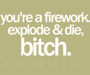 bitch, firework, and quote image