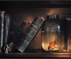 book, fish, and old image