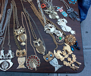 lion, neklace, and owl image