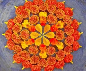 flowers, mandala, and orange image