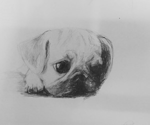 art, pencil, and puppy image