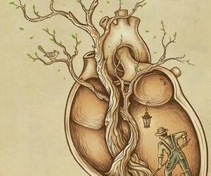 eyes anatomy heart image