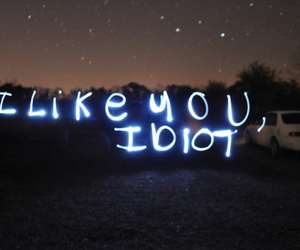 idiot, text, and photography image