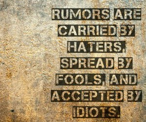 fools, haters, and idiots image