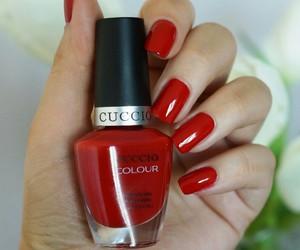 bulgaria, manicure, and nail polish image