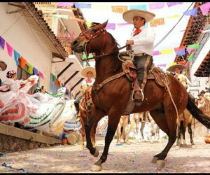 horse and mexico image