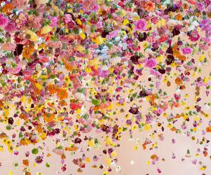 flowers, colors, and art image