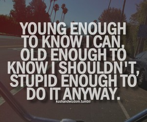 life, quote, and stupid image