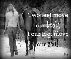 horse, body, and quote image
