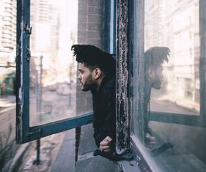 the weeknd, xo, and abel tesfaye image