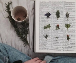 book, indie, and flowers image