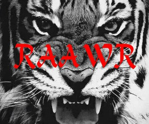 tiger and raawr image