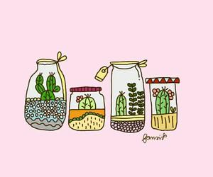 cactus and fernsis image
