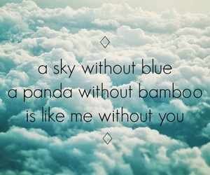 couple, panda, and quotes image