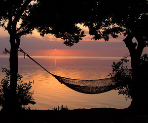 sunset, summer, and nature image