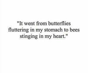 butterfly, bee, and heart image