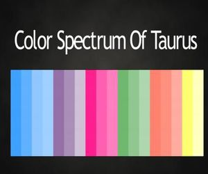colors and taurus image