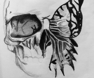 art, black, and butterfly image