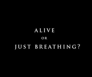 alive, quotes, and breathing image