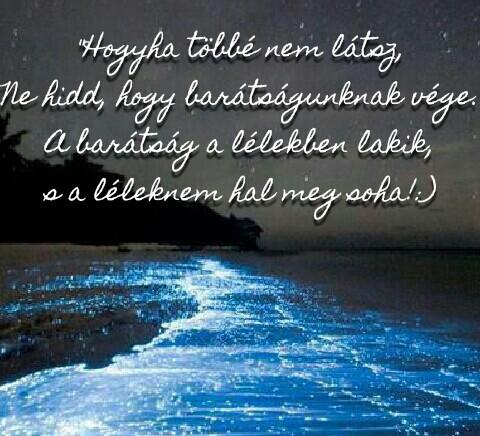 a barátság idézetek Barátságról idézet uploaded by ~Alice~ on We Heart It