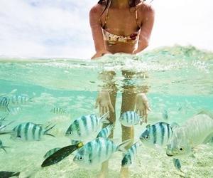 fish, summer, and girl image