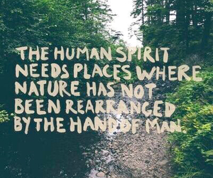 nature, quote, and spirit image