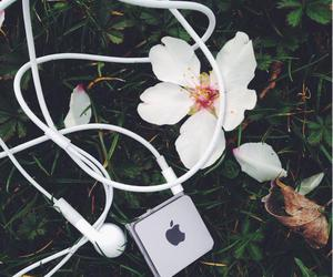 flower, ipod, and tumblr image