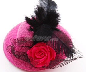 barrette, elegant, and feather image