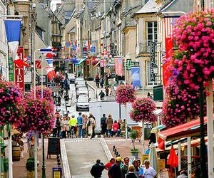 france, travel, and flowers image