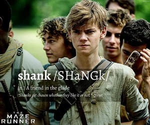 newt, shank, and the maze runner image