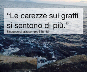 frasi, italian, and quotes image