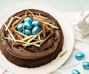 blue, bunny, and cake image