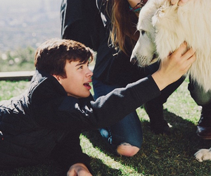 hayes grier, boy, and dog image