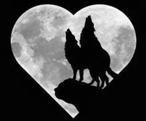 heart and wolf image