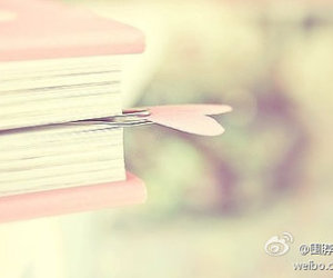 book, pink, and love image
