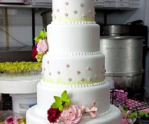cakes boss image