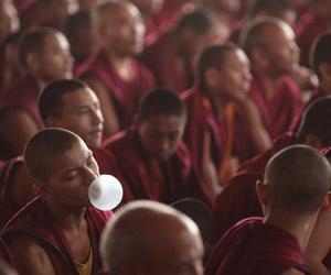 Buddhist and bible gum image