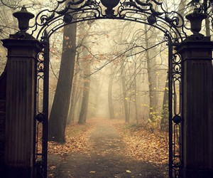autumn, forest, and gate image
