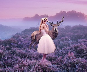 lilac, photography, and deer image
