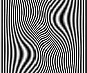 black and white and illusion image