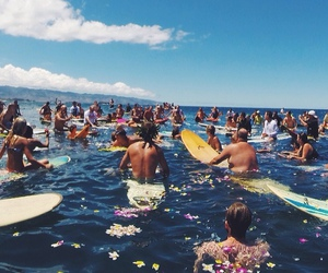 summer, surf, and flowers image