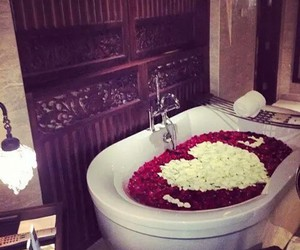 love, rose, and bath image