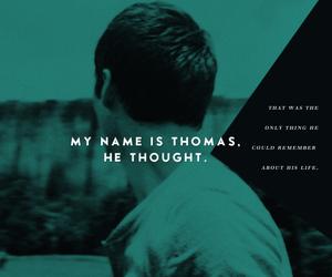 thomas and dylan o'brien image