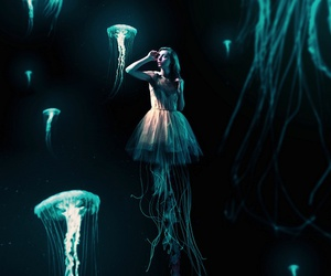 jellyfish, ocean, and underwater image