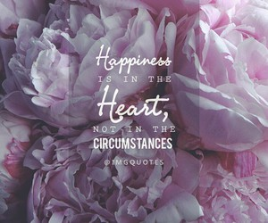 happiness, life, and heart image