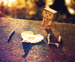 love and danbo image